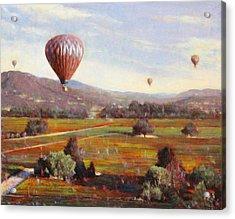 Napa Balloon Autumn Ride Acrylic Print by Takayuki Harada