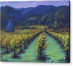 Napa Valley Vineyards Down Silverado By Deirdre Shibano Acrylic Print by Deirdre Shibano