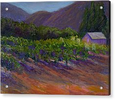 Napa Vineyard Acrylic Print by Bonnie Hanly