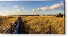 Acrylic Print featuring the photograph Napatree Dunes by Kirkodd Photography Of New England