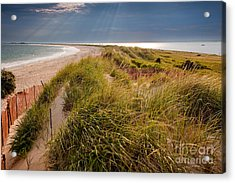 Napatree Point Preserve Acrylic Print by Susan Cole Kelly