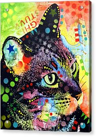 Nappy Cat Acrylic Print by Dean Russo