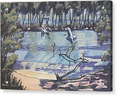 Narrabeen Lakes 2 Acrylic Print by Murray McLeod