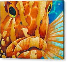 Nassau Grouper  Acrylic Print