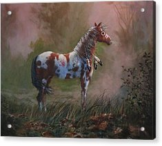 Native American War Pony Acrylic Print by Tom Shropshire