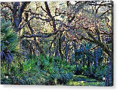 Natural 10 17b Acrylic Print