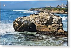 Natural Bridges Santa Cruz Acrylic Print