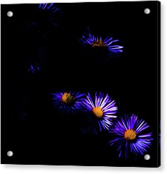 Acrylic Print featuring the digital art Natural Fireworks by Timothy Hack