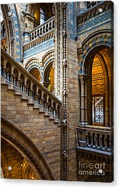 Natural History Museum Staircase Acrylic Print
