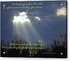 Natural Lamb Cloud Nlt Acrylic Print