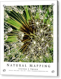Natural Mapping Acrylic Print by Steven Tryon