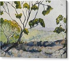 Natural Park A Shoalhaven Acrylic Print