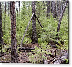 Natural Peace In The Woods Acrylic Print