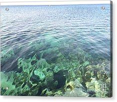 Natural Sea Aquarium Cyprus Acrylic Print