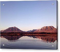 Natural Symmetry Acrylic Print by Happy Home Artistry