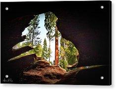 Natural Window Acrylic Print