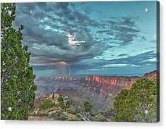Natural Wonders Acrylic Print