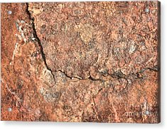 Nature Abstract - Cracked Acrylic Print by Carol Groenen