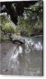 Nature At Its Best. Acrylic Print