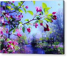 Nature Awakening Acrylic Print