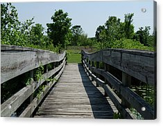 Nature Bridge Acrylic Print