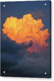 Nature Explotion Acrylic Print