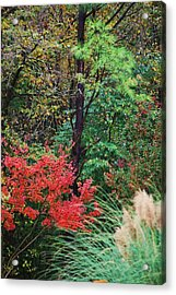 Nature In All Her Beauty Acrylic Print by Trudi Southerland
