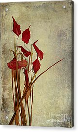 Nature Morte Du Moment Acrylic Print