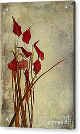 Nature Morte Du Moment T01 Acrylic Print