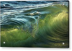 Acrylic Print featuring the photograph Nature Never Ceases To Amaze by Peter Thoeny
