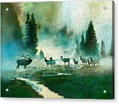 Nature Scene Acrylic Print