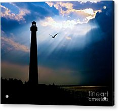 Nature Shines Brighter Acrylic Print by Mark Miller