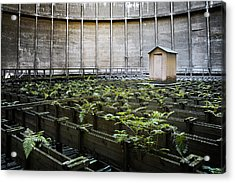 Acrylic Print featuring the photograph Nature Takes Back - Inside Cooling Tower by Dirk Ercken