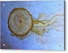 Nature's Abstract Acrylic Print