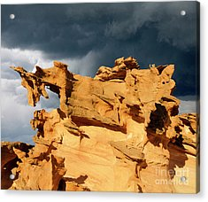 Acrylic Print featuring the photograph Nature's Artistry Nevada 3 by Bob Christopher