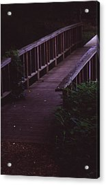 Nature's Bridge Acrylic Print by Randy Muir