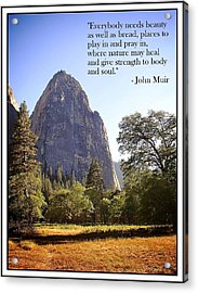 Natures Cathedral Acrylic Print by Glenn McCarthy Art and Photography