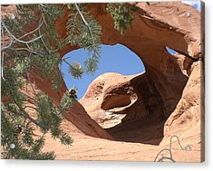 Acrylic Print featuring the photograph Natures Eye by Fred Wilson
