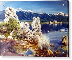Nature's Ghosts Acrylic Print by Marion  Hylton