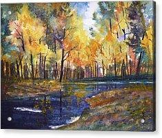 Nature's Glory Acrylic Print by Ryan Radke