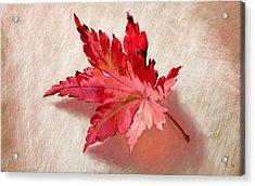Nature's Handshake Acrylic Print