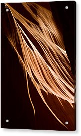 Natures Lines Acrylic Print by Adam Romanowicz