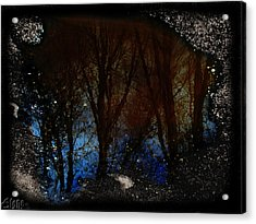 Natures Looking Glass 2 Acrylic Print