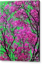 Natures Magic - Pink And Green Acrylic Print