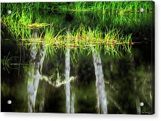 Acrylic Print featuring the photograph Nature's Mirror by Dee Browning