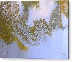 Natures Mirror Acrylic Print by Florene Welebny