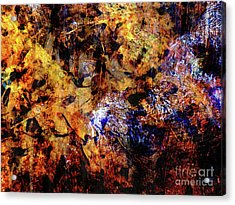 Natures Music Acrylic Print by Robert Ball