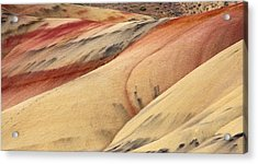 Nature's Palette Acrylic Print by Mike  Dawson