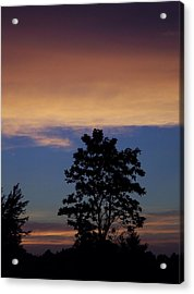 Natures Palette Acrylic Print