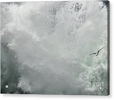 Acrylic Print featuring the photograph Nature's Power by Peggy Hughes